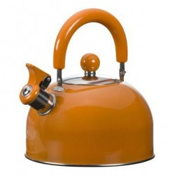 Bouilloire sifflet Orange 1.5 l