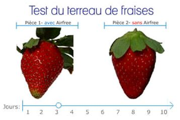 Test de la fraise